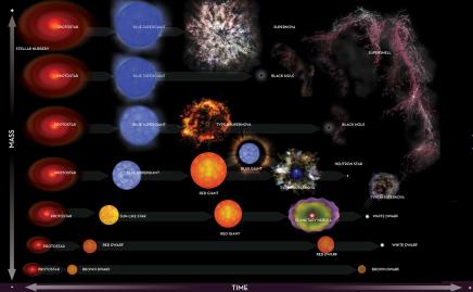 Stellar models andevolution